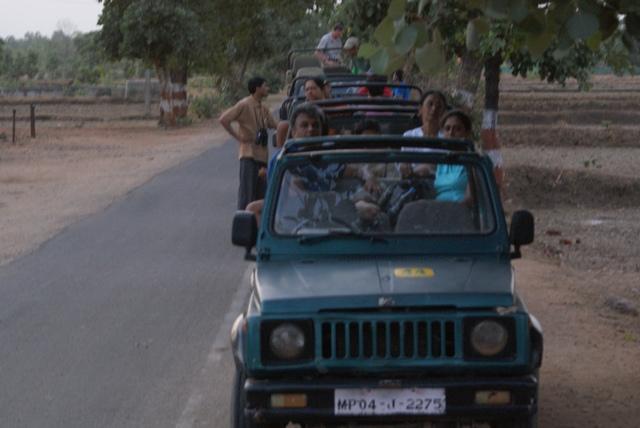 Tadoba Diary: Jungle Raaj